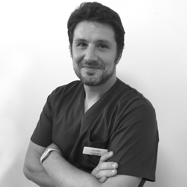 Dr Thibault Ribas